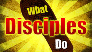 Image result for what disciples do